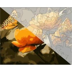 Pictura pe numere 40x50 cm - Panza din bumbac pe rama de lemn - Fluturele si craiesele (PDP-205)