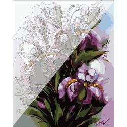 Pictura pe numere 40x50 cm - Panza din bumbac pe rama de lemn - Irisi regali (PDP-432)