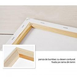 Pictura pe numere - Panza din bumbac pe rama de lemn 40*50 cm - Pierduta in Poveste (2) (PDP-421)