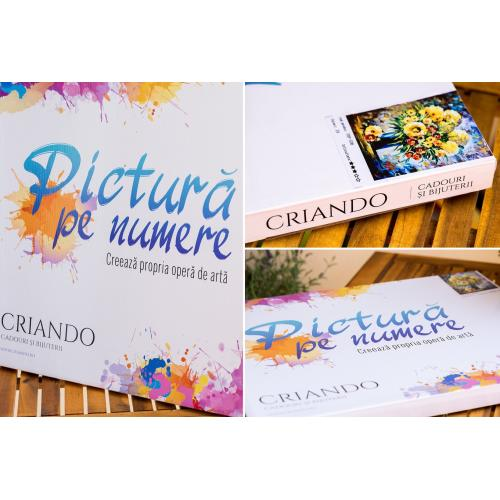 PICTURA PE NUMERE 50x40 cm (PDP-586)