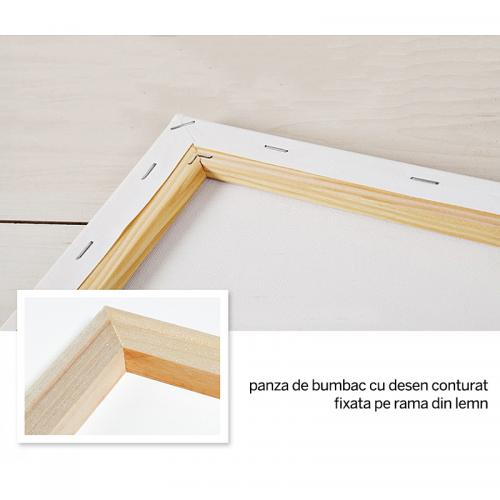 Pictura pe numere - Panza din bumbac pe rama de lemn 40*50 cm - Dans Romantic (PDP-615)