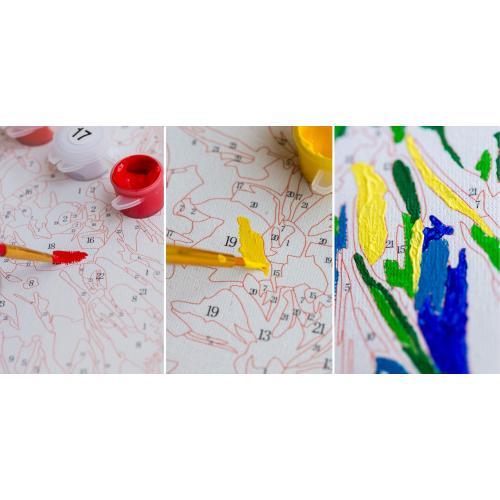 Pictura pe numere - Panza din bumbac pe rama de lemn 40*50 cm - Paunul colorat (2) (XZC-400)
